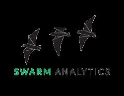 logo-swarmanalytics-digital-chiefs-alina-moser