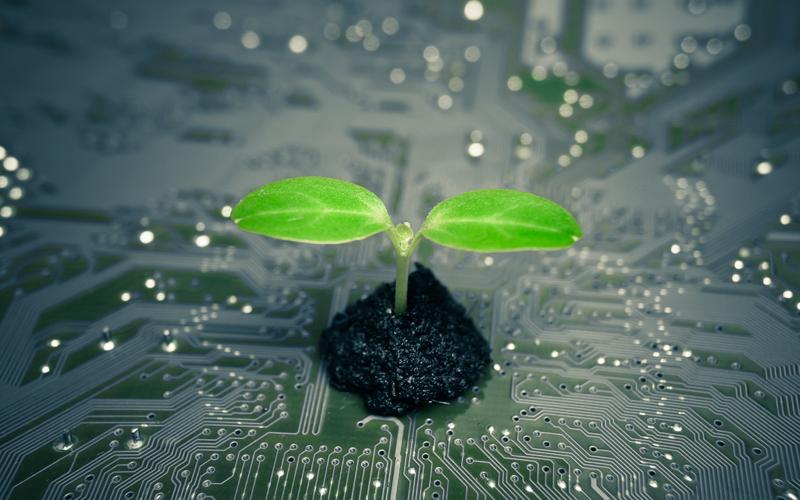 nachhaltigkeit-serviceprovider-digital-chiefs.
